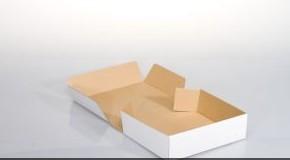 Rodzaj pudełka Fefco 203